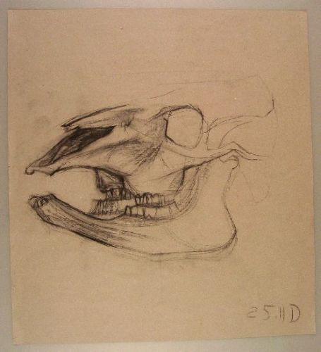 Kopf-Hand-Fuss_04